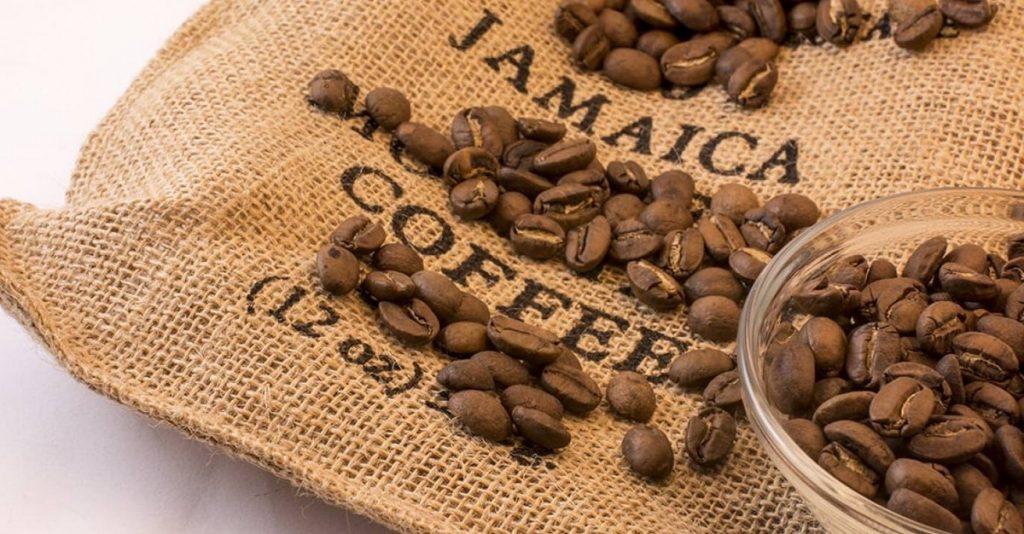 À la découverte du café de Jamaïque